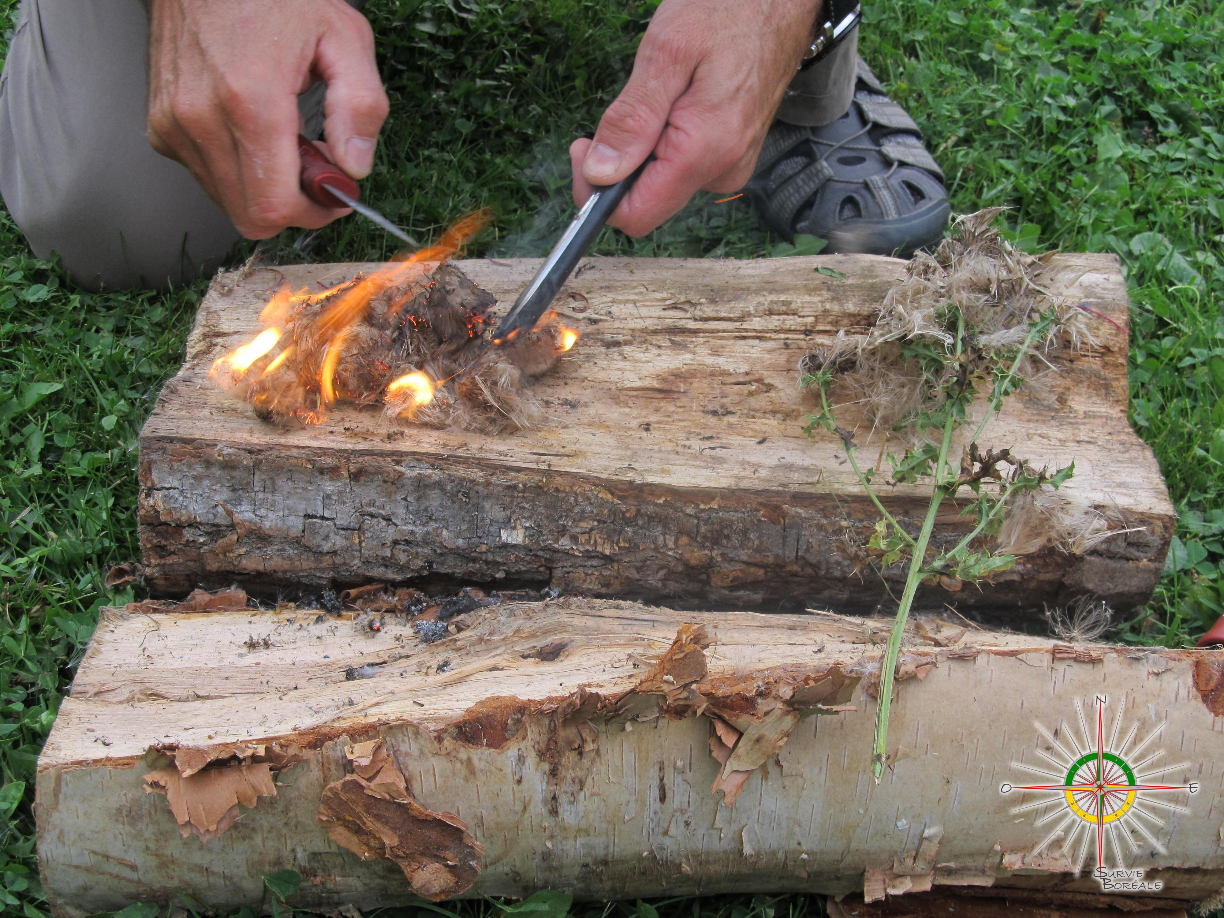 10 comte-juste Pull /& Spark pour enflammer! Amadou-Quik survie feu de départ onglets